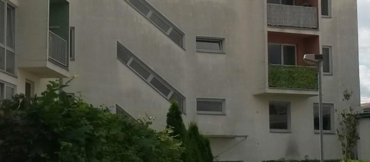 Odstranění plísní z fasád domu v Praze